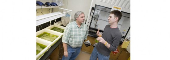 Professor Jeff Lodge and graduate student Eric Lannan explore algae as a biodiesel fuel